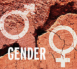 gender symbols drawn on rocks with text gender